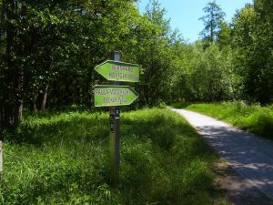 Alme-Radweg zwischen Büren und Weine