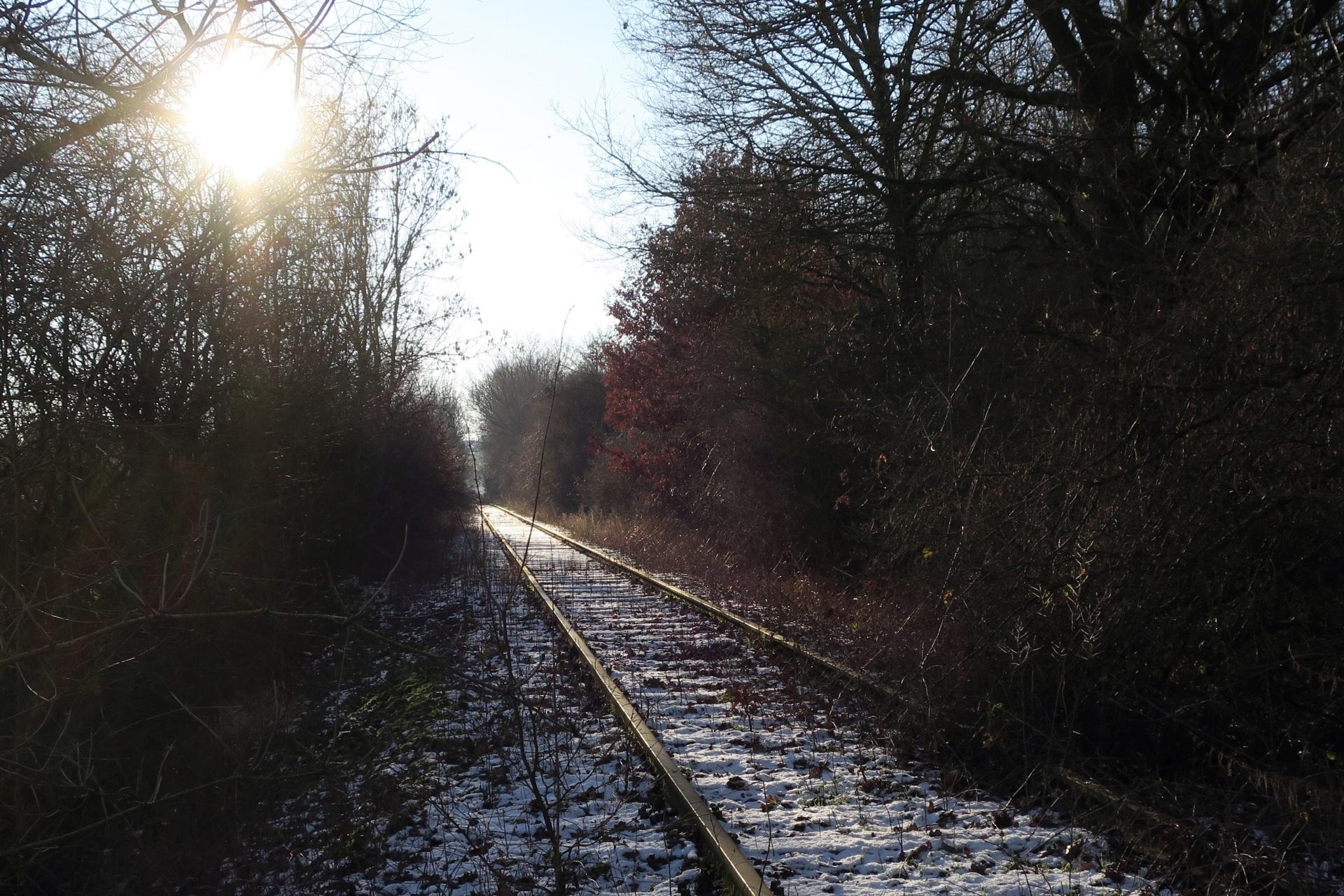 Gleisstrang südlich von Büren im winterlichen Sonnenlicht. Hier fuhren lange die Züge des Waldbahnvereins.